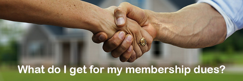 What do I get for my membership dues?